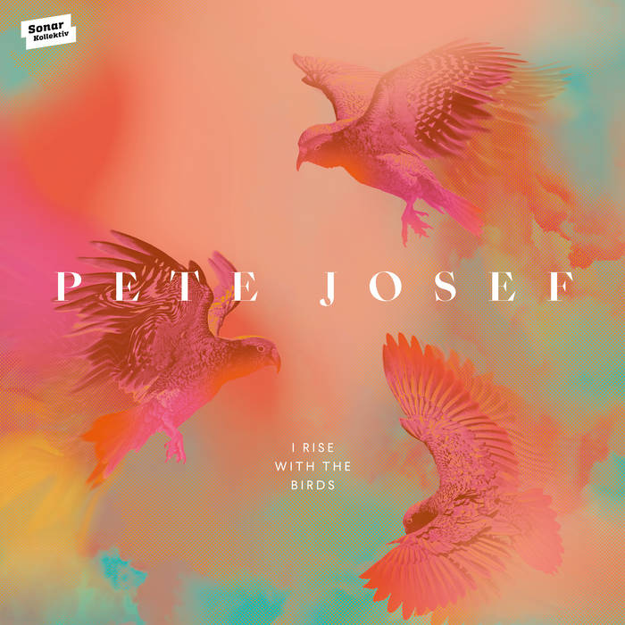 I Rise With The Birds by Pete Josef